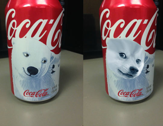 funny-picture-Coke-polar-bear-Doge-can