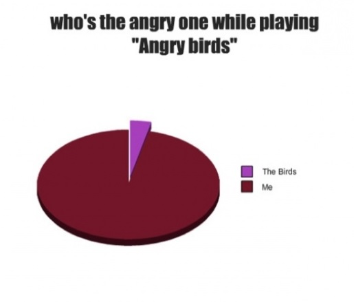 funny-picture-angry-birds-me
