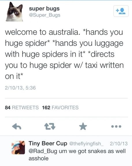 funny-picture-australia-spiders-snakes
