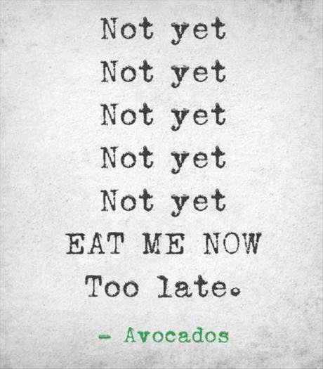funny-picture-avocados-assholes
