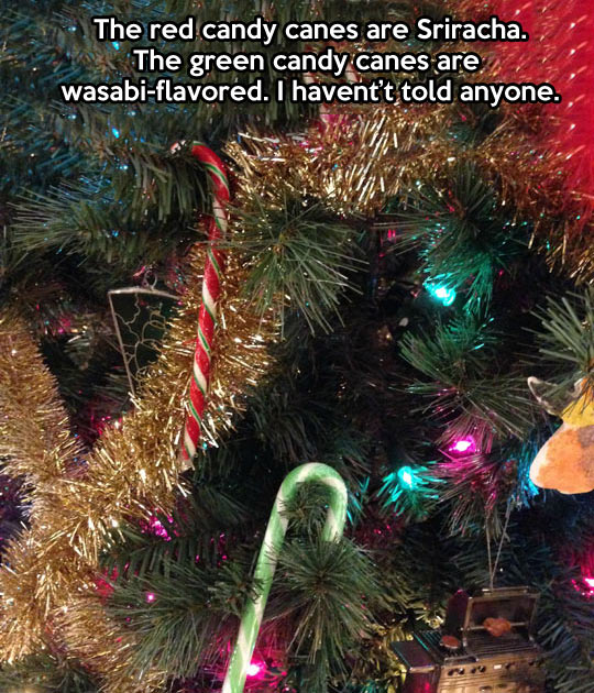 funny-picture-candy-prank-christmas-tree-spice