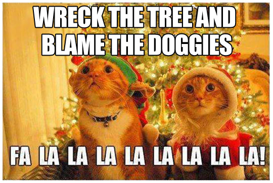 funny-picture-cats-Christmas-song-tree