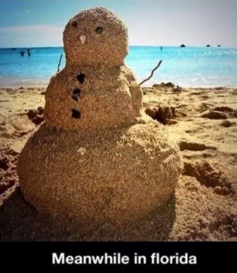 funny-picture-christmas-florida-snowman