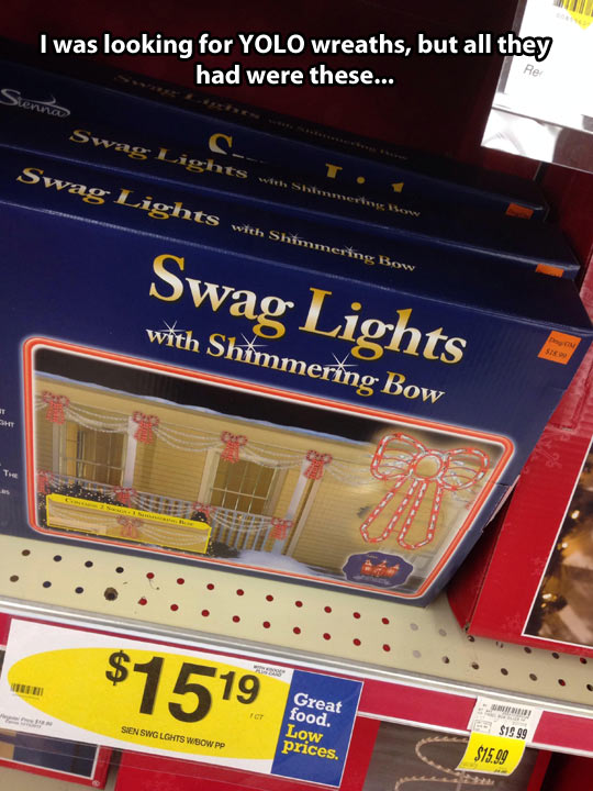 funny-picture-christmas-lights-shimmer-bow
