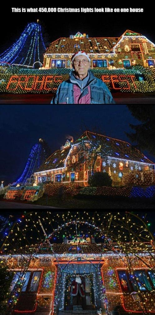 funny-picture-christmas-lights