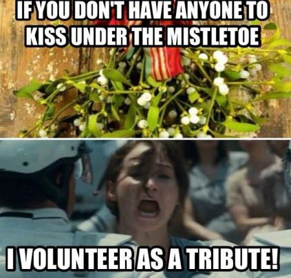 funny-picture-christmas-mistletoe-hunger-games
