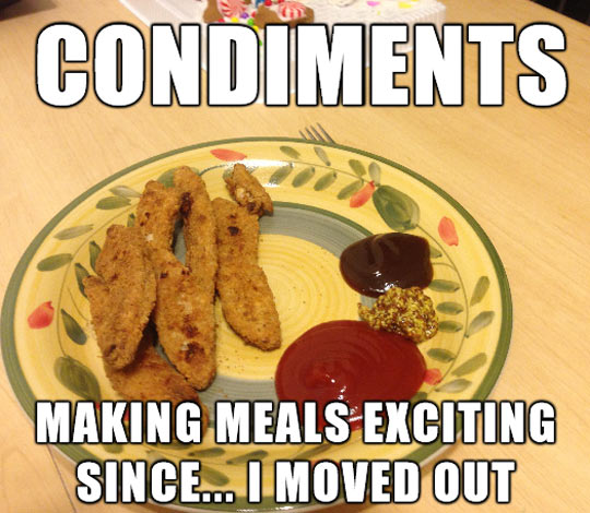 funny-picture-condiments-plate-food-eating