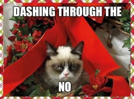 funny-picture-cristmass-grumpy-cat-no