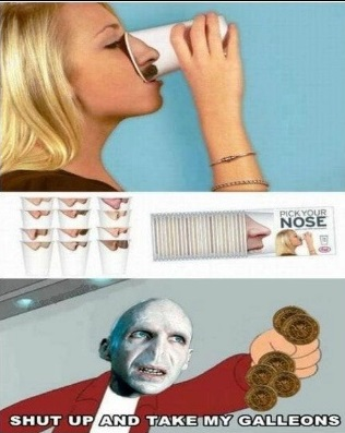 funny-picture-cup-voldemort