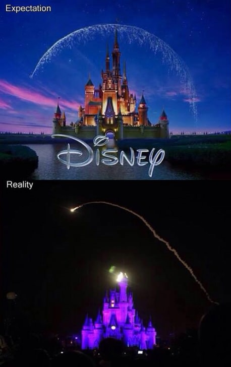 funny-picture-disney-expectationreality