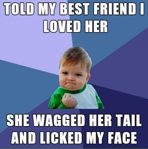 funny-picture-dog-best-friend