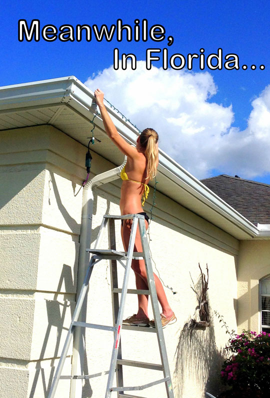 funny-picture-girl-hanging-lights-christmas-heat-florida