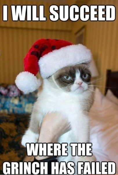 funny-picture-grinch-grumpy-cat