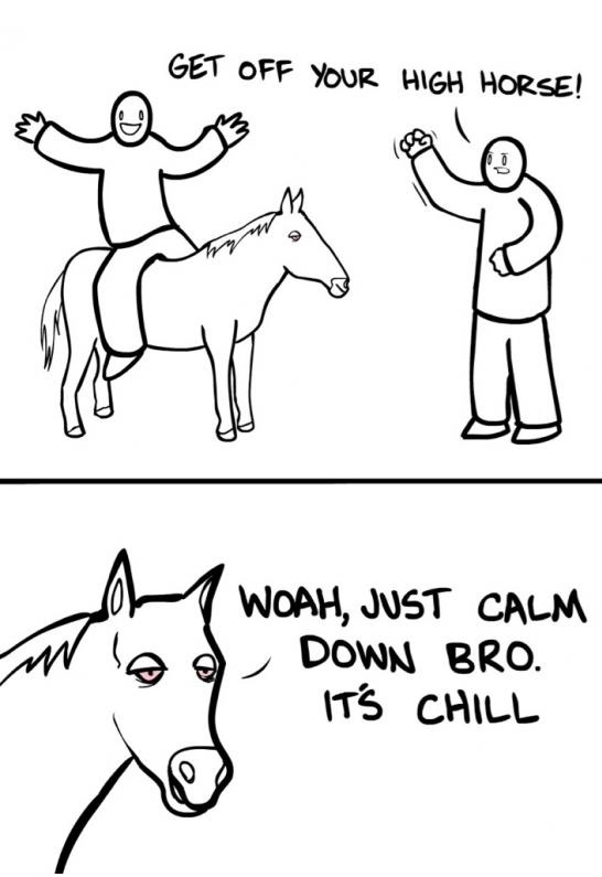 funny-picture-high-horse