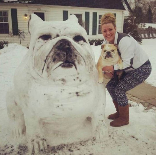 funny-picture-ice-sculpture-snow-dog