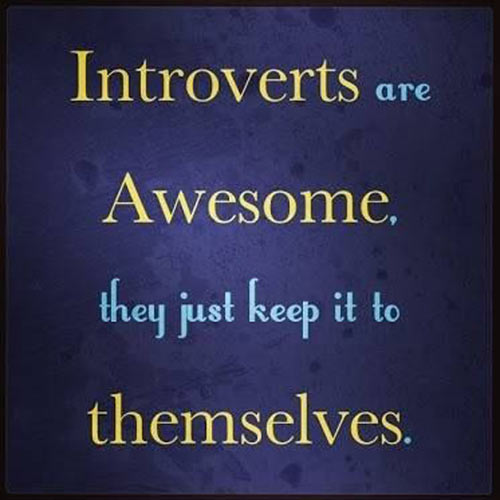 funny-picture-introverts-awesome-people-keep