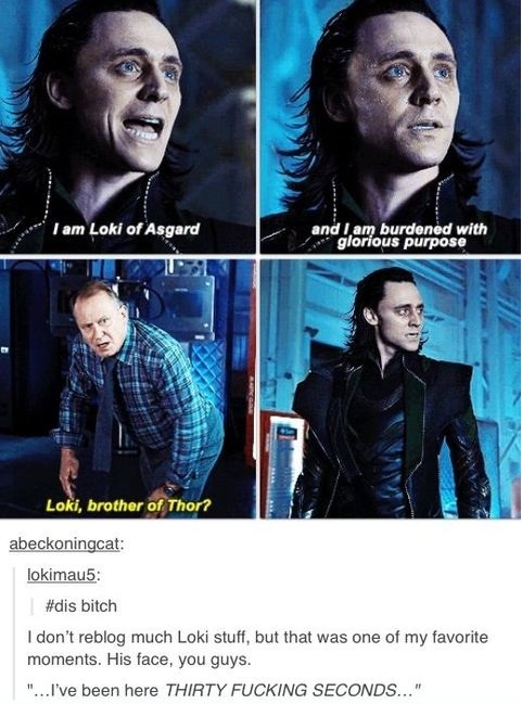 funny-picture-loki-brothe-of-thor