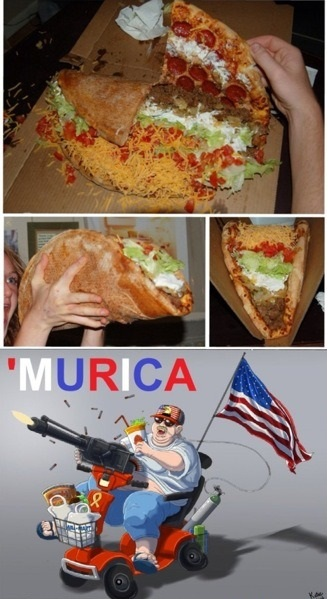 funny-picture-pizza-murica