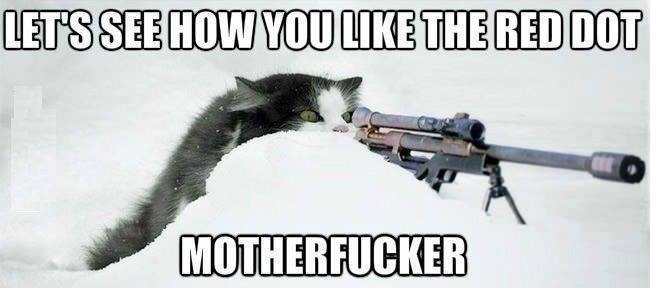 funny-picture-red-dot-cat-badass.jpg