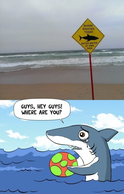 funny-picture-shark-sign
