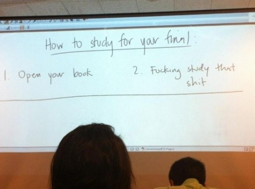 funny-picture-study-final-book-class-guide