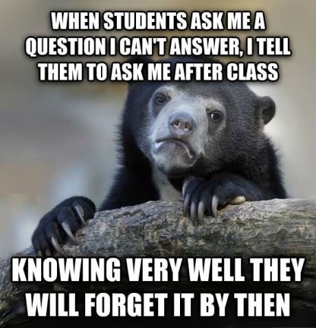 funny-picture-teacher-confession-bear-meme