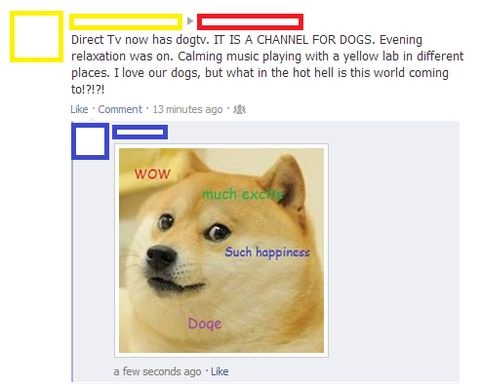 funny-picture-tv-doge
