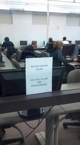funny-picture-wild-programmers-note