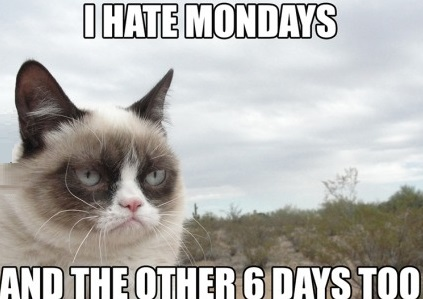funny-picutre-grumpy-cat-hate-mondays-other-days