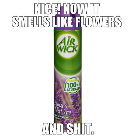 funny-picture-air-flowers-and-shit