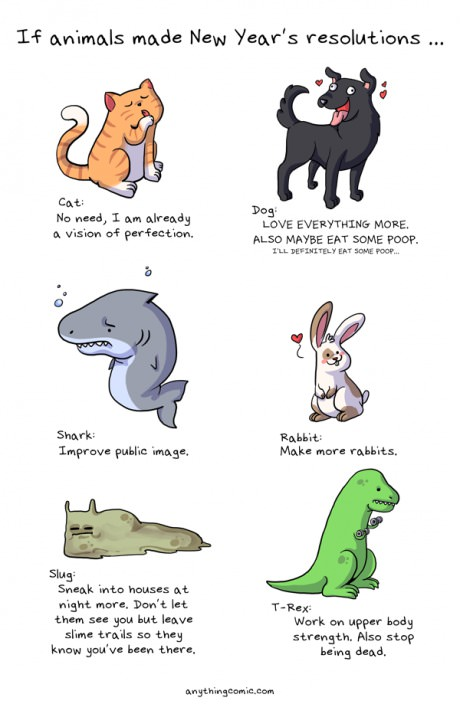 Animals New Year\'s resolutions