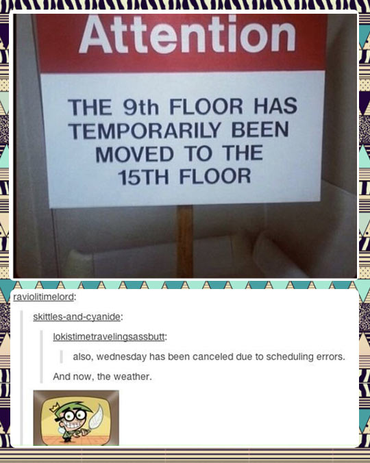 funny-picture-building-week-floor-feather