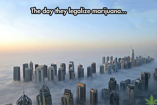 funny-picture-city-behind-clouds-pot-smoke