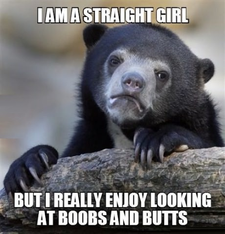 funny-picture-confession-bear-girl-boobs-butts