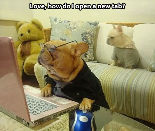 funny-picture-dog-glasses-laptop-mouse-internet