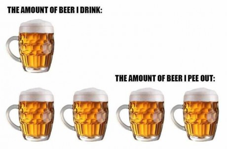 funny-picture-drink-beer