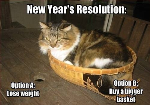 funny-picture-fat-cat-new-year-resolution