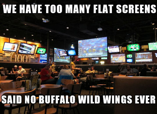 funny-picture-flat-screen-photo-no
