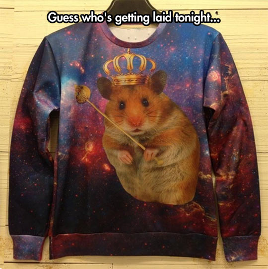 funny-picture-hamster-queen-shirt-cute