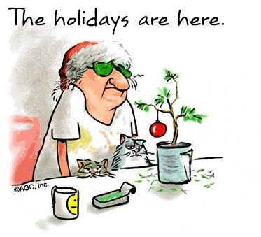funny-picture-hokidays-christmas-new-year