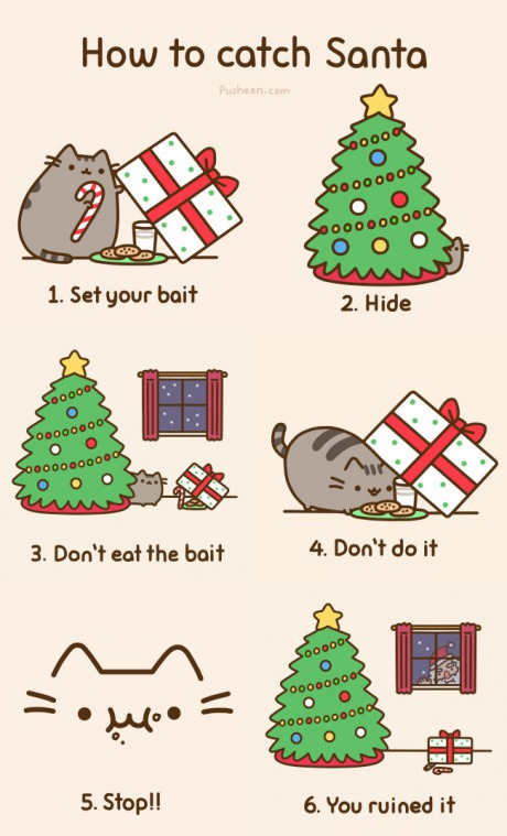 funny-picture-how-to-catch-santa