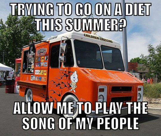 funny-picture-ice.cream-truck-summer-song