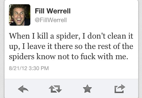 funny-picture-kill-spider-will-ferrell