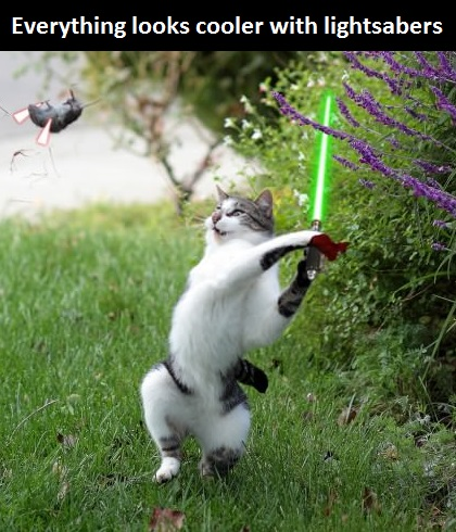 funny-picture-lightsabers-cat-mouse
