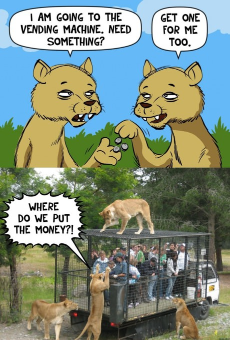 [Image: funny-picture-lion-vending-machine.jpg]