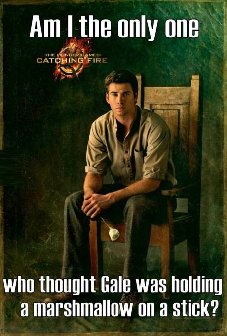 funny-picture-marshmallow-gale