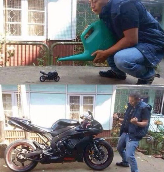 funny-picture-motorcycle-watering-growing-happy-guy