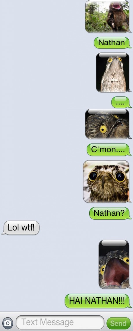 funny-picture-nathan-text-wtf