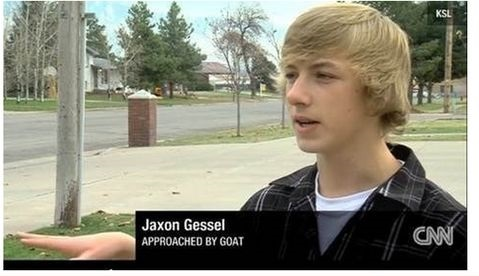 funny-picture-news-approached-by-goat