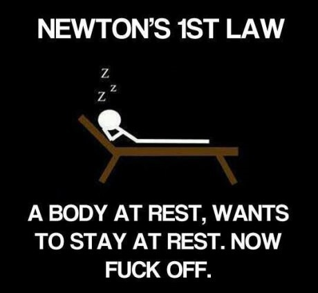 funny-picture-newton-law